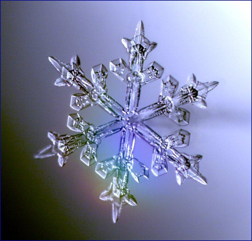 http://www.cco.caltech.edu/~atomic/snowcrystals/designer3/compo1.jpg